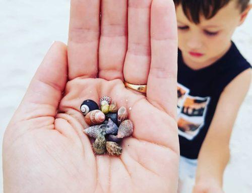 Finding tiny treasures with my tiny treasure